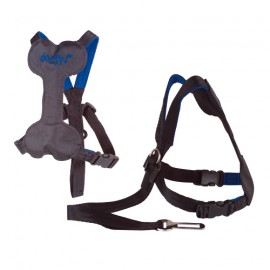 Safety harness for car