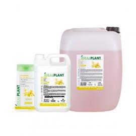 Idealplant tea tree oil shampoo