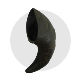 Horn Of Buffle
