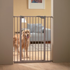 Dog Barrier