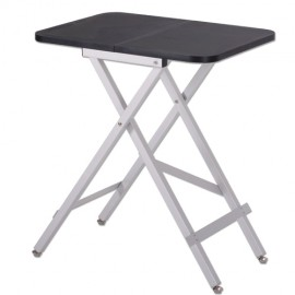 Mini folding table