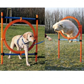 Agility Jumping set