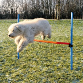 Agility training hurdle