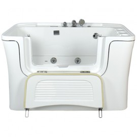 SPA bath tub with door