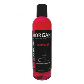 Morgan raspberry protein shampoo