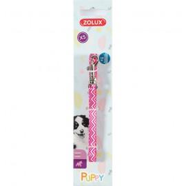 Puppy pixie leash