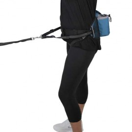 Blue Jogging Belt and lead
