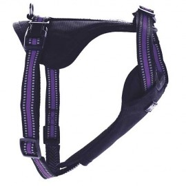 Doogy Sport Harness Purple