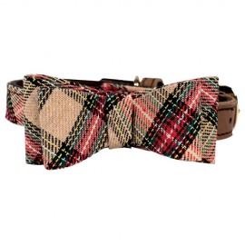 Collar Scottish