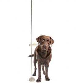 Profession adjustable dog Measure stick