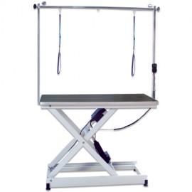 Phoenix Universal Saturn electric grooming table