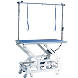 Phoenix Universal Cassiopeia electric grooming table