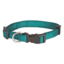 Doogy classic nylon collar - green