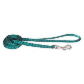 Doogy basic nylon lead - red