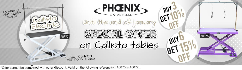 promo callisto until 31 january