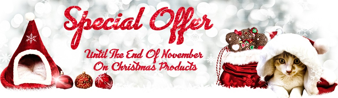 Special offer Christmas toys
